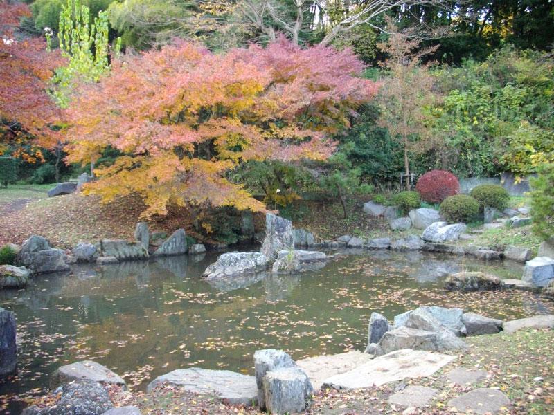 簗田寺の湧水