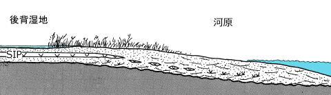 ページ-SIPの分布と古東京湾の...
