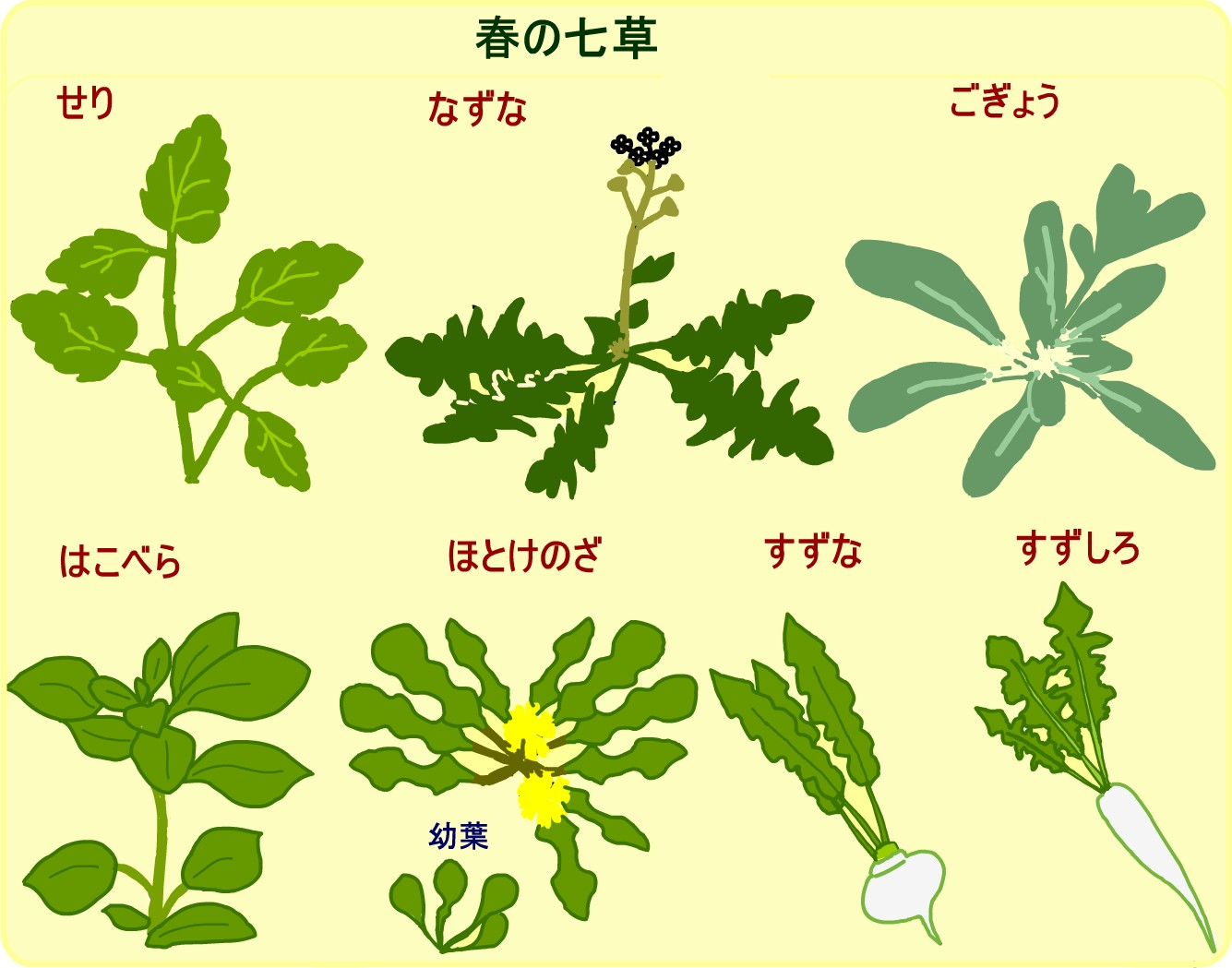 春の七草 一覧表